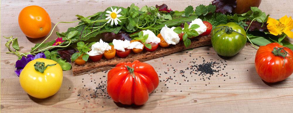 Bunte Tomate/ Mozzarella/ Wildkräuter/ Foto-Shooting