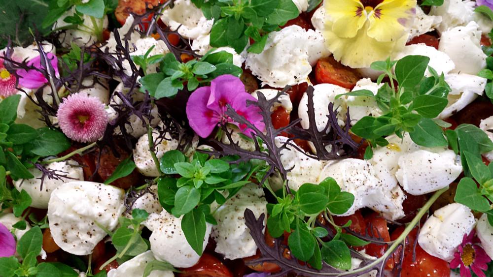 Mozzarella mit Blumen
